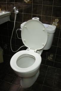 Egypt_toilet